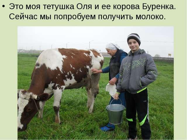 Это моя тетушка Оля и ее корова Буренка. Сейчас мы попробуем получить молоко.