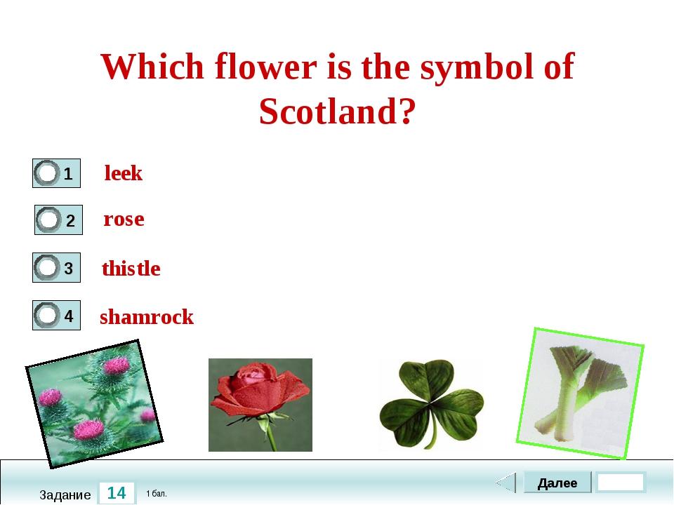 14 Задание Which flower is the symbol of Scotland? leek thistle shamrock Дале...