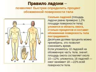 Сколько ладоней (площадь ладони равна примерно 1,2% площади поверхности тела)