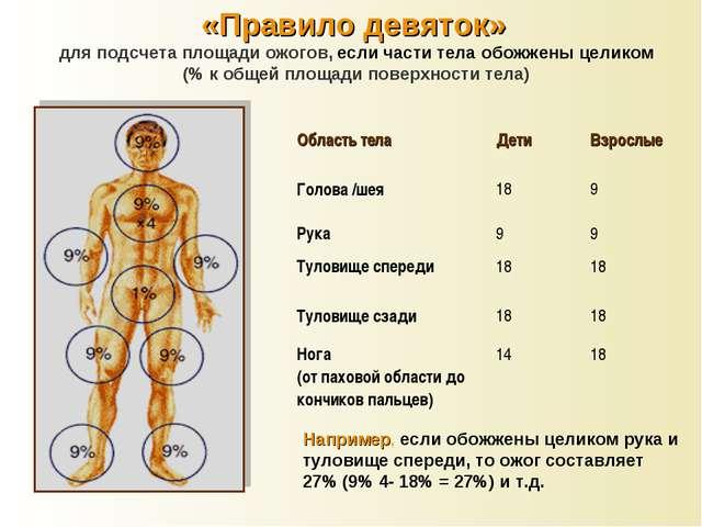 «Правило девяток» для подсчета площади ожогов, если части тела обожжены целик...
