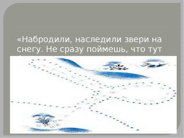«Набродили, наследили звери на снегу. Не сразу поймешь, что тут было».
