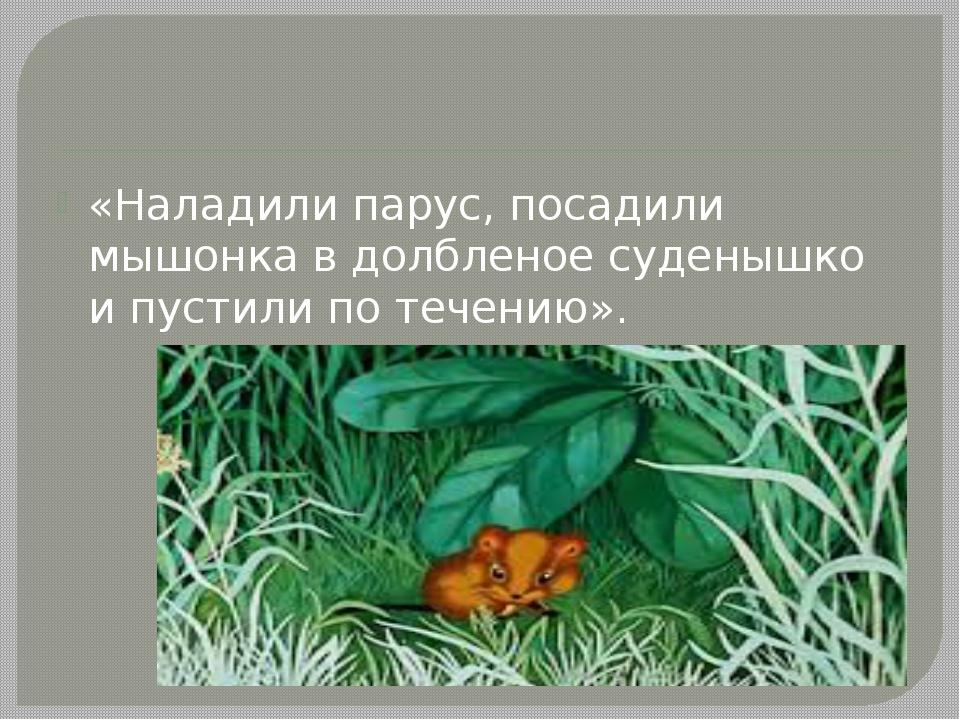 «Наладили парус, посадили мышонка в долбленое суденышко и пустили по течению».