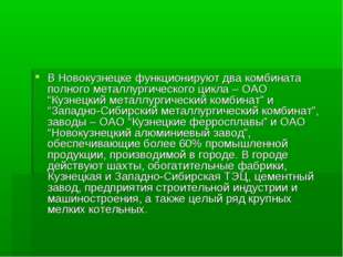 В Новокузнецке функционируют два комбината полного металлургического цикла –