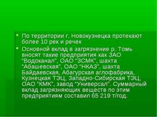 По территории г. Новокузнецка протекают более 10 рек и речек Основной вклад в