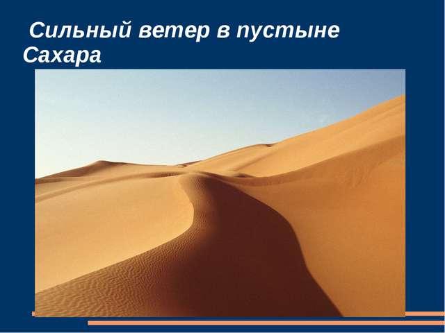 Сильный ветер в пустыне Сахара