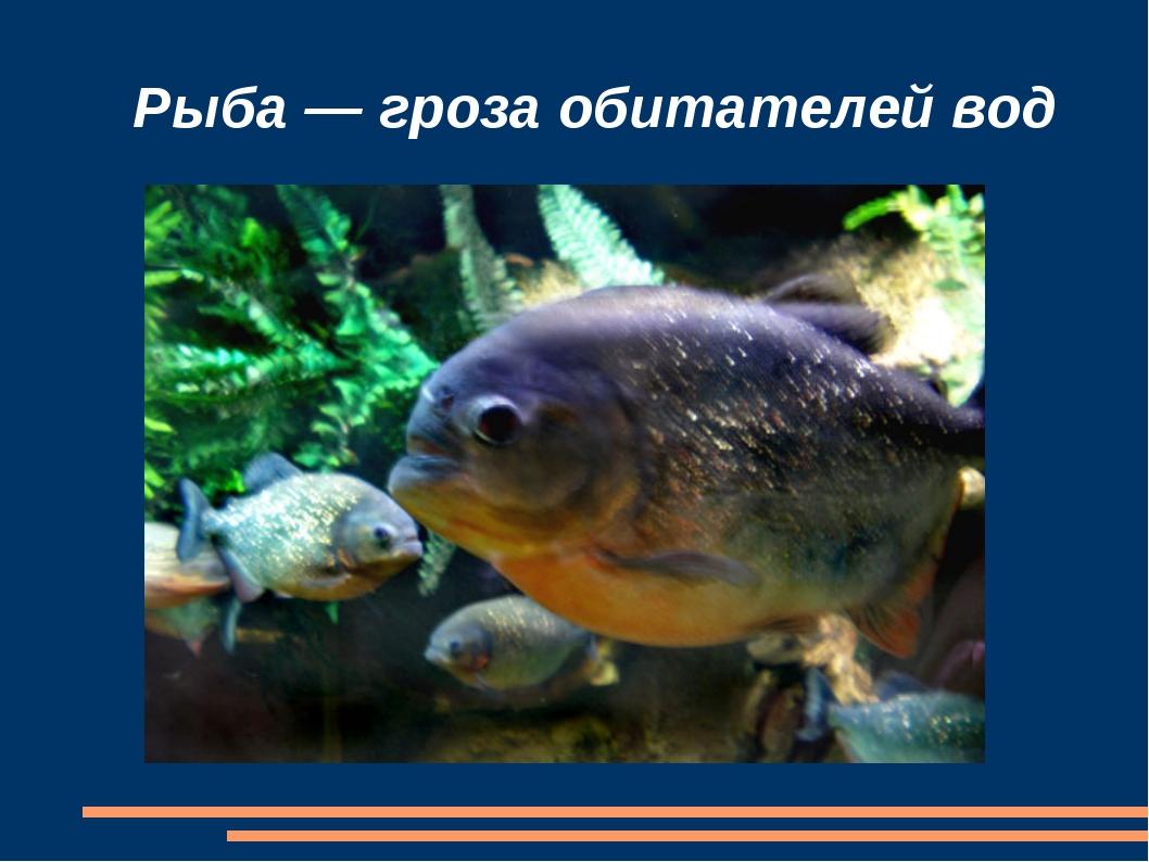 Рыба — гроза обитателей вод