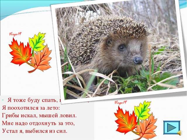 Я тоже буду спать, как мишка, Я поохотился за лето: Грибы искал, мышей ловил....