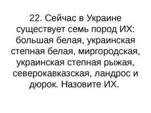 22. Сейчас в Украине существует семь пород ИХ: большая белая, украинская степ