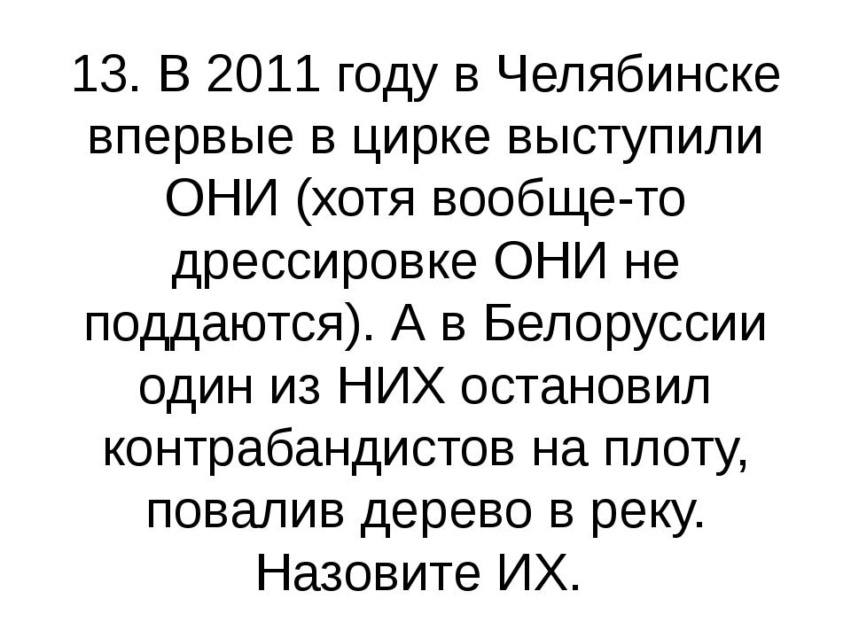 13. В 2011 году в Челябинске впервые в цирке выступили ОНИ (хотя вообще-то др...