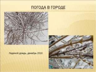 Ледяной дождь, декабрь 2010