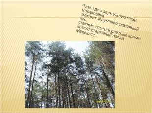 Там, где в зеркальную гладь Черемшана смотрит задумчиво сказочный лес, статны