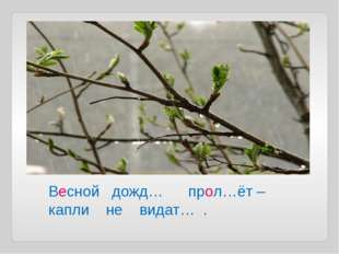 Весной дожд… прол…ёт – капли не видат… .