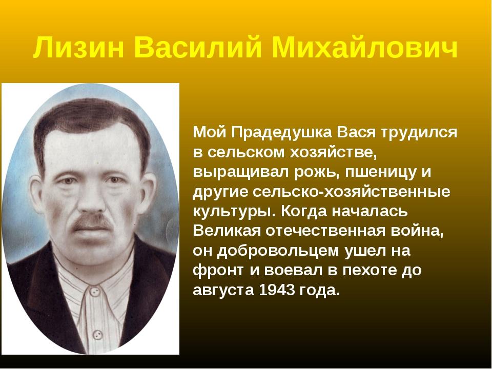 Лизин Василий Михайлович Мой Прадедушка Вася трудился в сельском хозяйстве, в...