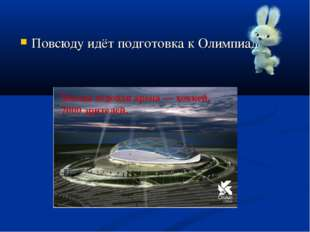 Повсюду идёт подготовка к Олимпиаде. Малая ледовая арена— хоккей, 7000 зрит