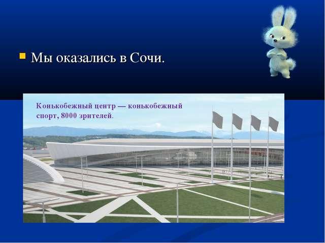Мы оказались в Сочи. Конькобежный центр— конькобежный спорт, 8000 зрителей.