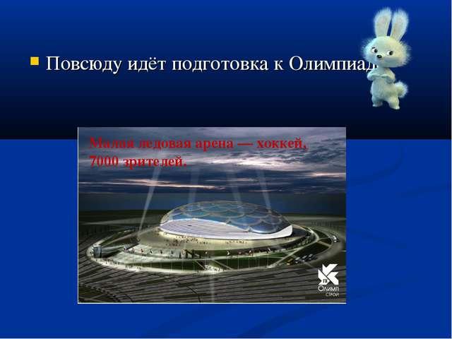 Повсюду идёт подготовка к Олимпиаде. Малая ледовая арена— хоккей, 7000 зрит...
