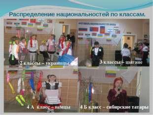 Распределение национальностей по классам. 2 классы – украинцы 3 классы – цыга