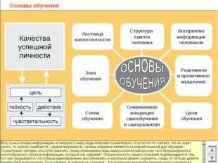 Основы обучения Структура памяти человека Восприятие информации человеком Лес