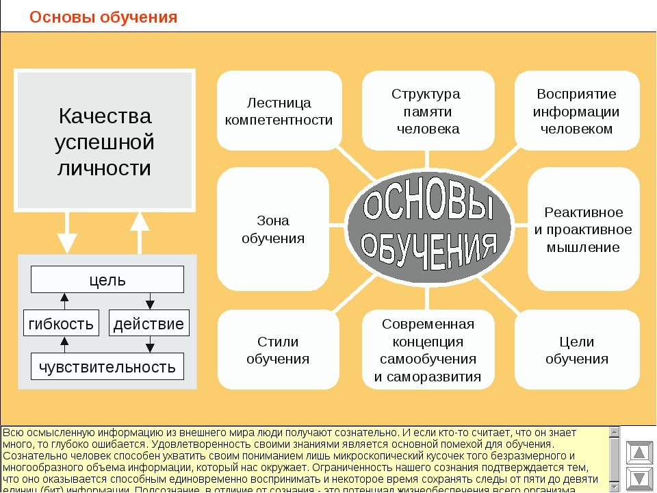 Основы обучения Структура памяти человека Восприятие информации человеком Лес...
