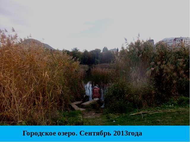 Городское озеро. Сентябрь 2013года