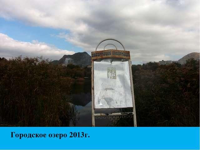 Городское озеро 2013г.
