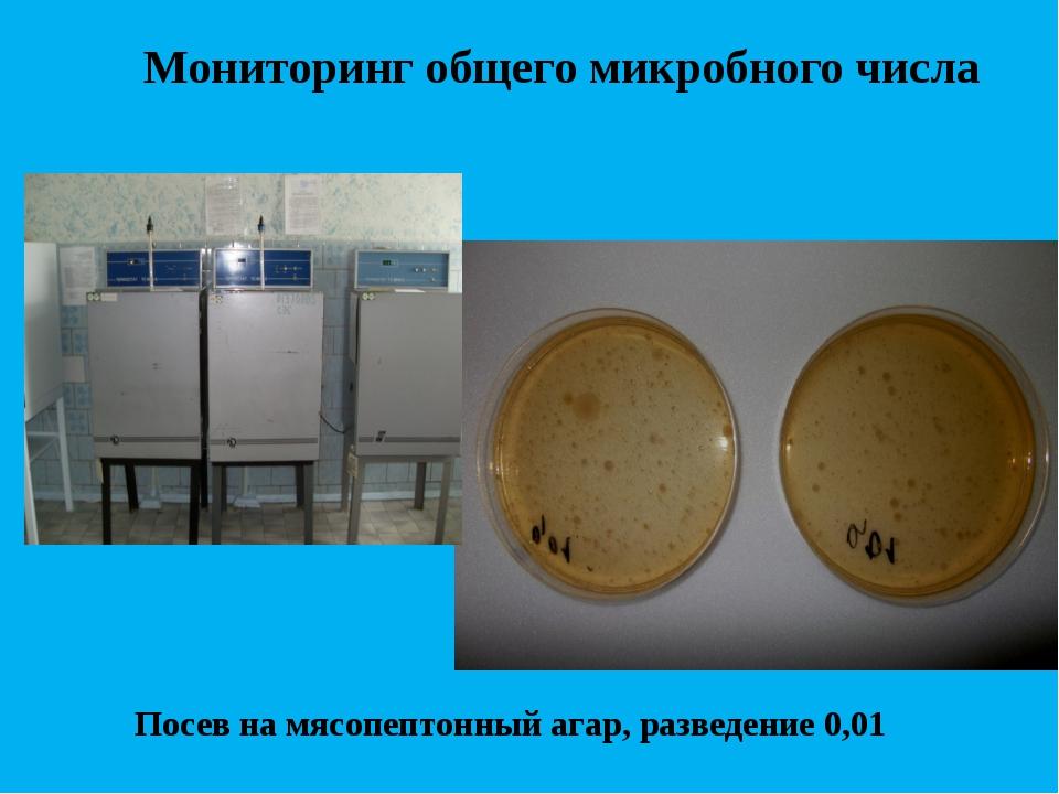 Мониторинг общего микробного числа Посев на мясопептонный агар, разведение 0,01