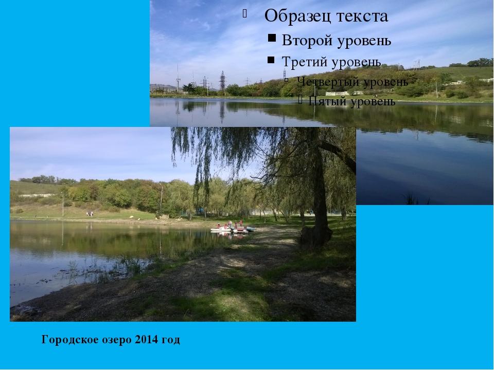 Городское озеро 2014 год