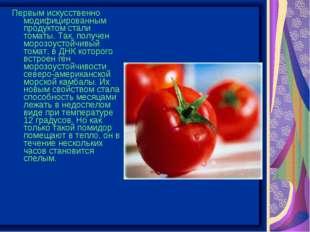 Первым искусственно модифицированным продуктом стали томаты. Так, получен мор