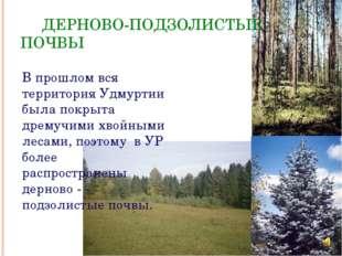 ДЕРНОВО-ПОДЗОЛИСТЫЕ ПОЧВЫ В прошлом вся территория Удмуртии была покрыта дре