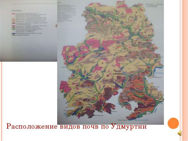 Расположение видов почв по Удмуртии