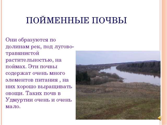 ПОЙМЕННЫЕ ПОЧВЫ Они образуются по долинам рек, под лугово- травянистой расти...