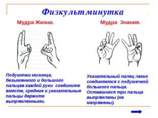 Физкультминутка Мудра Жизни. Мудра Знания. Указательный палец легко соединяе