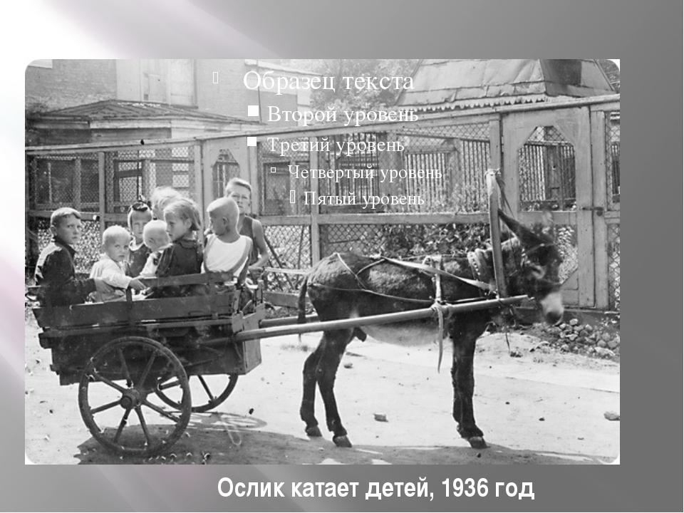 Ослик катает детей, 1936 год
