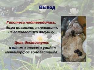 Вывод Гипотеза подтвердилась: дома возможно вырастить из головастика лягушку.