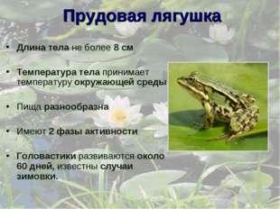 Прудовая лягушка Длина тела не более 8 см Температура тела принимает температ