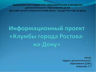 . муниципальное бюджетное образовательное учреждение дополнительного образов