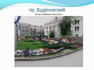 пр. Будёновский Автор: Бибикова Анастасия