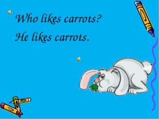 Who likes carrots? He likes carrots.