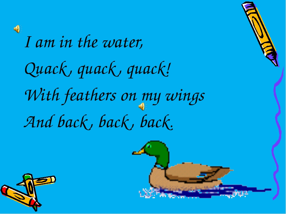 I am in the water, Quack, quack, quack! With feathers on my wings And back, b...
