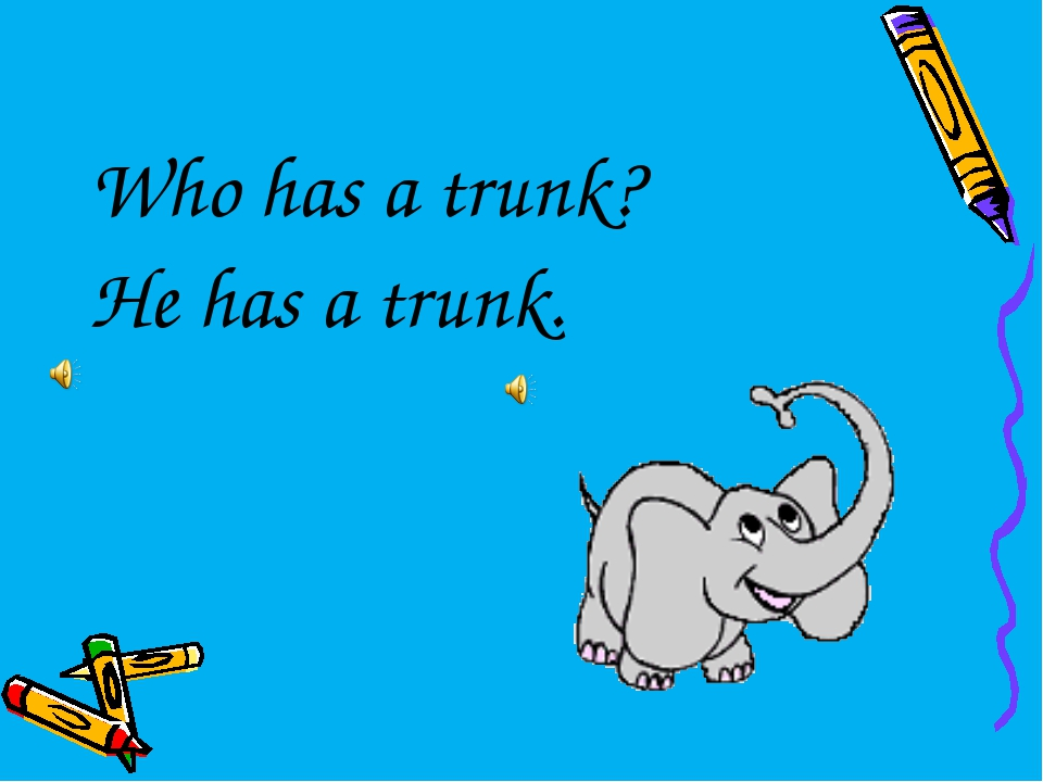 Who has a trunk? He has a trunk.
