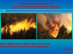 В лесу нельзя разводить костры, так как от них может возникнуть пожар. «Из од