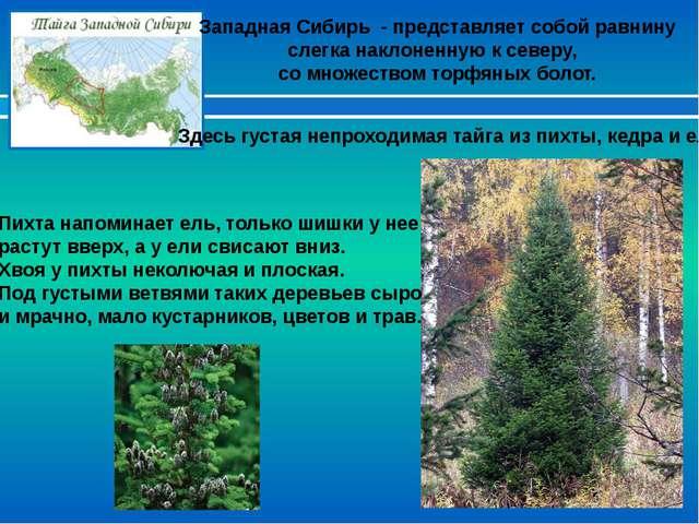 Западная Сибирь - представляет собой равнину слегка наклоненную к северу, со...