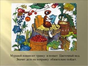 Муравей пощиплет травку и попьет Цветочный мед. Значит дело на поправку обя
