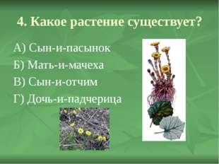 4. Какое растение существует? А) Сын-и-пасынок Б) Мать-и-мачеха В) Сын-и-отчи