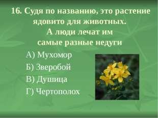 16. Судя по названию, это растение ядовито для животных. А люди лечат им самы