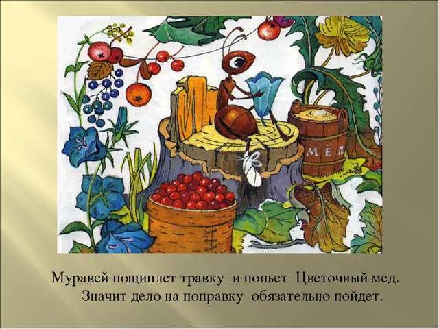 Муравей пощиплет травку и попьет Цветочный мед. Значит дело на поправку обя...