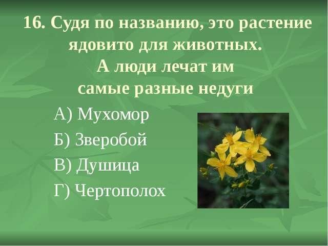 16. Судя по названию, это растение ядовито для животных. А люди лечат им самы...