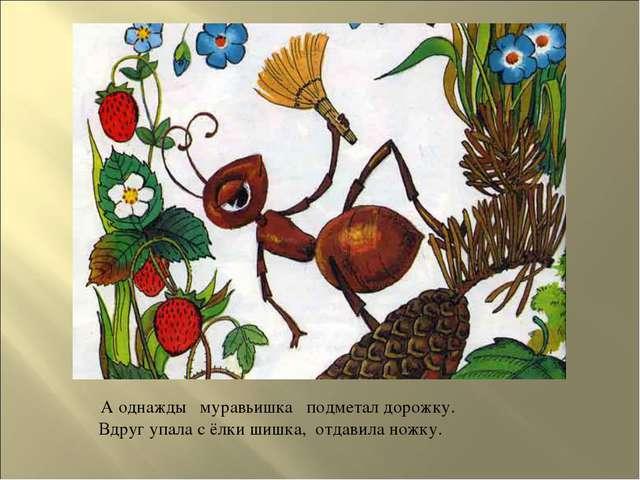А однажды муравьишка подметал дорожку. Вдруг упала с ёлки шишка, отдавила но...