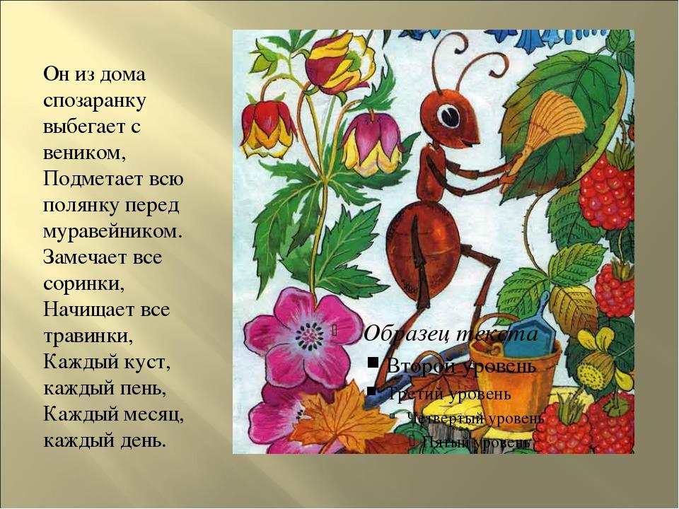 Он из дома спозаранку выбегает с веником, Подметает всю полянку перед мураве...
