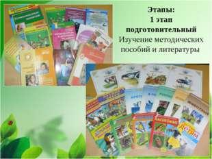 Этапы: 1 этап подготовительный Изучение методических пособий и литературы